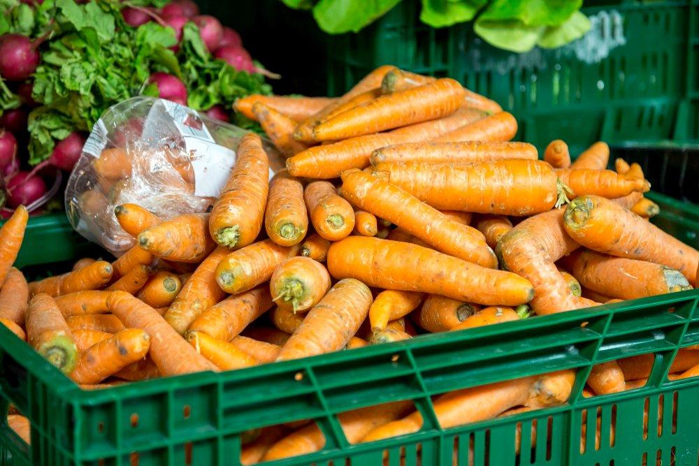 Einwandfreie Karotten.
