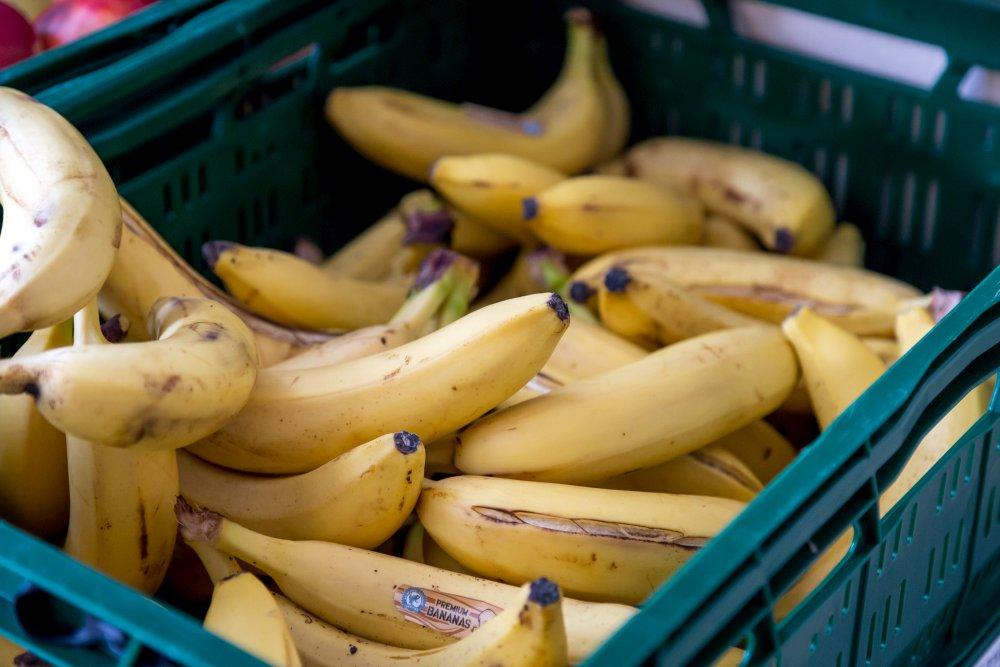 Auch die Bananen zeigen keinerlei nennenswerte Mängel.