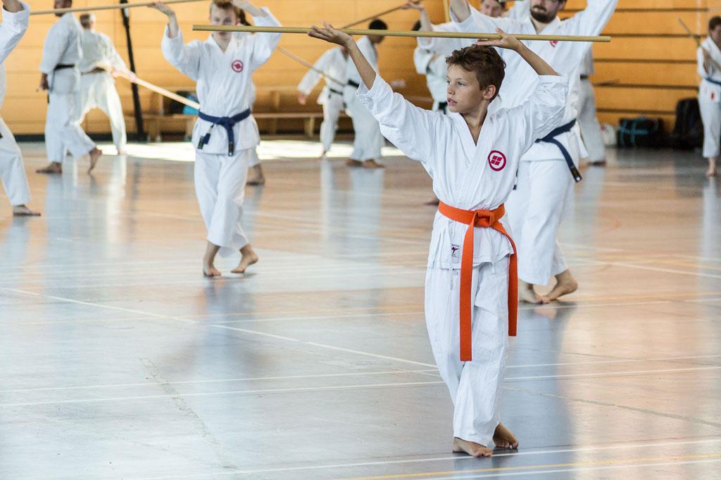 2016-09-10-wahlkurs-karate-beim-grossmeister-01